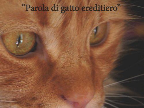 Pinky. «Parola di gatto ereditiero»
