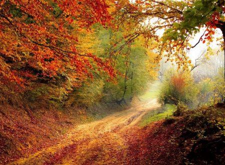 L'autunno e le sue festività